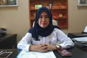 Kepala Dinas Penanaman Modal dan Pelayanan Terpadu Satu Pintu Provinsi Sumsel Megaria