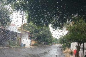 Cuaca hujan di sejumlah kawasan Bogor.