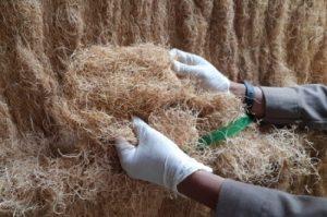 Pelaku agirbisnis sektor pertanian juga menyambut baik kondisi lockdown di Cina berakhir.