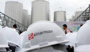Sinar Mas Agro Resources,,,,